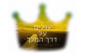 RACI – המודל הישראלי