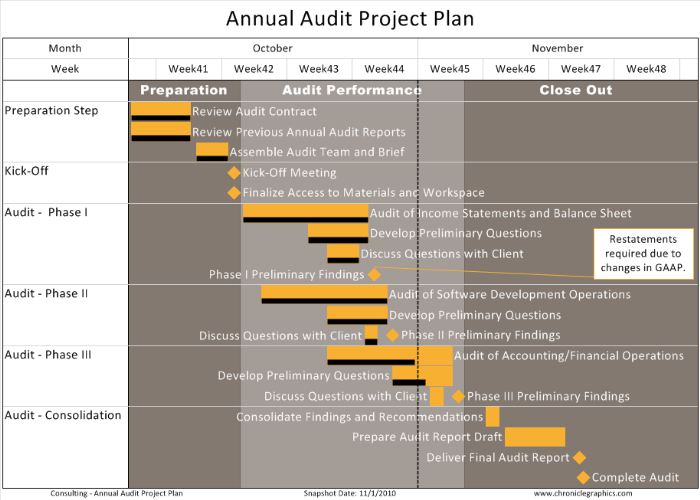 one-pager-pro_annual_audit_project_plan